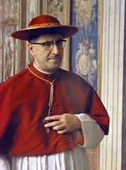 cardinal-siri